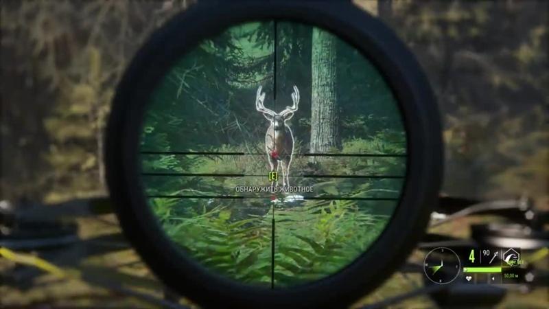 Mister Shpilkes theHunter Call of the Wild 12 🔫 Охота с Арбалетом БРИЛЛИАНТ ГАЙД для Начинающих