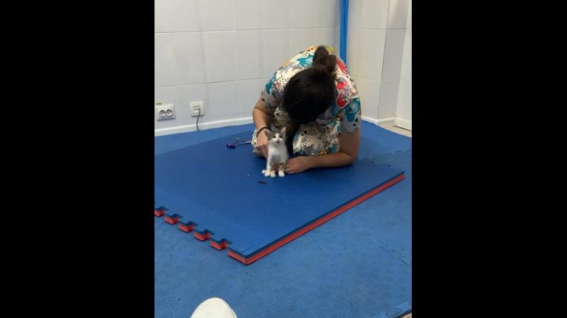 Видео от Катрин Францы