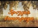 Семейная сага Гроздья винограда 1 - 24 серия. Мелодрама