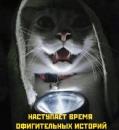 Личный фотоальбом Дмитрия Черепанова
