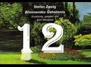 12. Gewitter гроза/Brennendes Geheimnis/S. Zweig