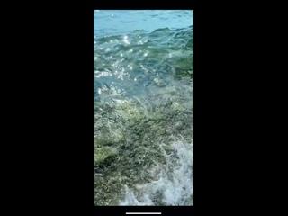 Видео от Наталины Великановой