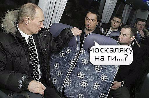 фото из альбома Святослава Демьяненко №13