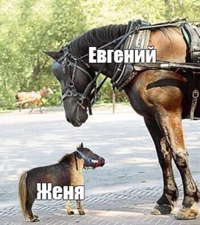Евгений Можевикин фото №14