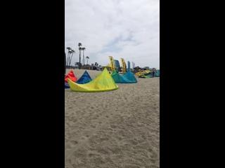 Long Beach kite fest