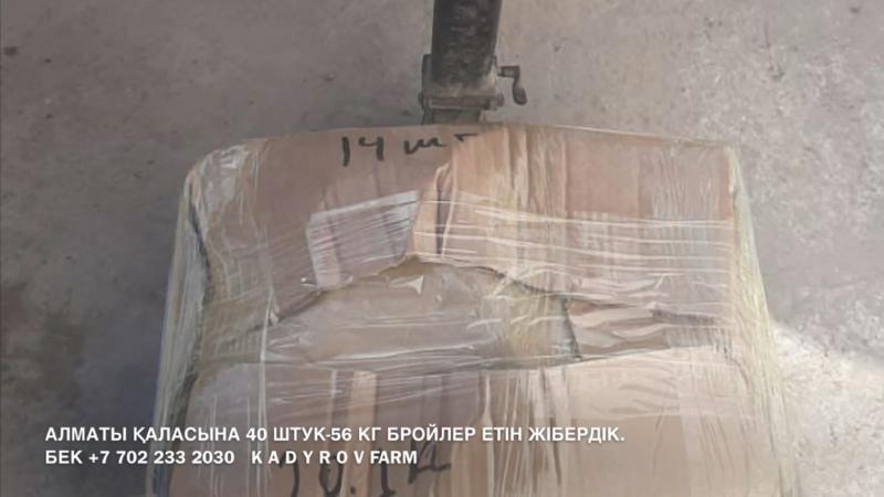 KADYROVFARM Алматыға 50 штук 76 6 кг БРОЙЛЕР тауық етін жібердік 02 02 2021