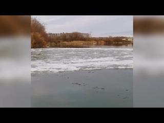 Причудливые ледяные диски