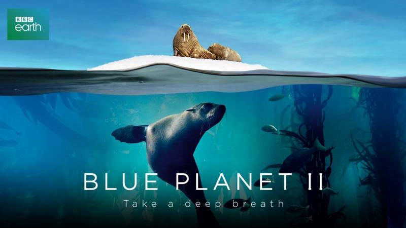 Голубая планета II 1 серия Один океан Blue Planet II 2017