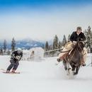 Какие зимние виды физической активности вы знаете?