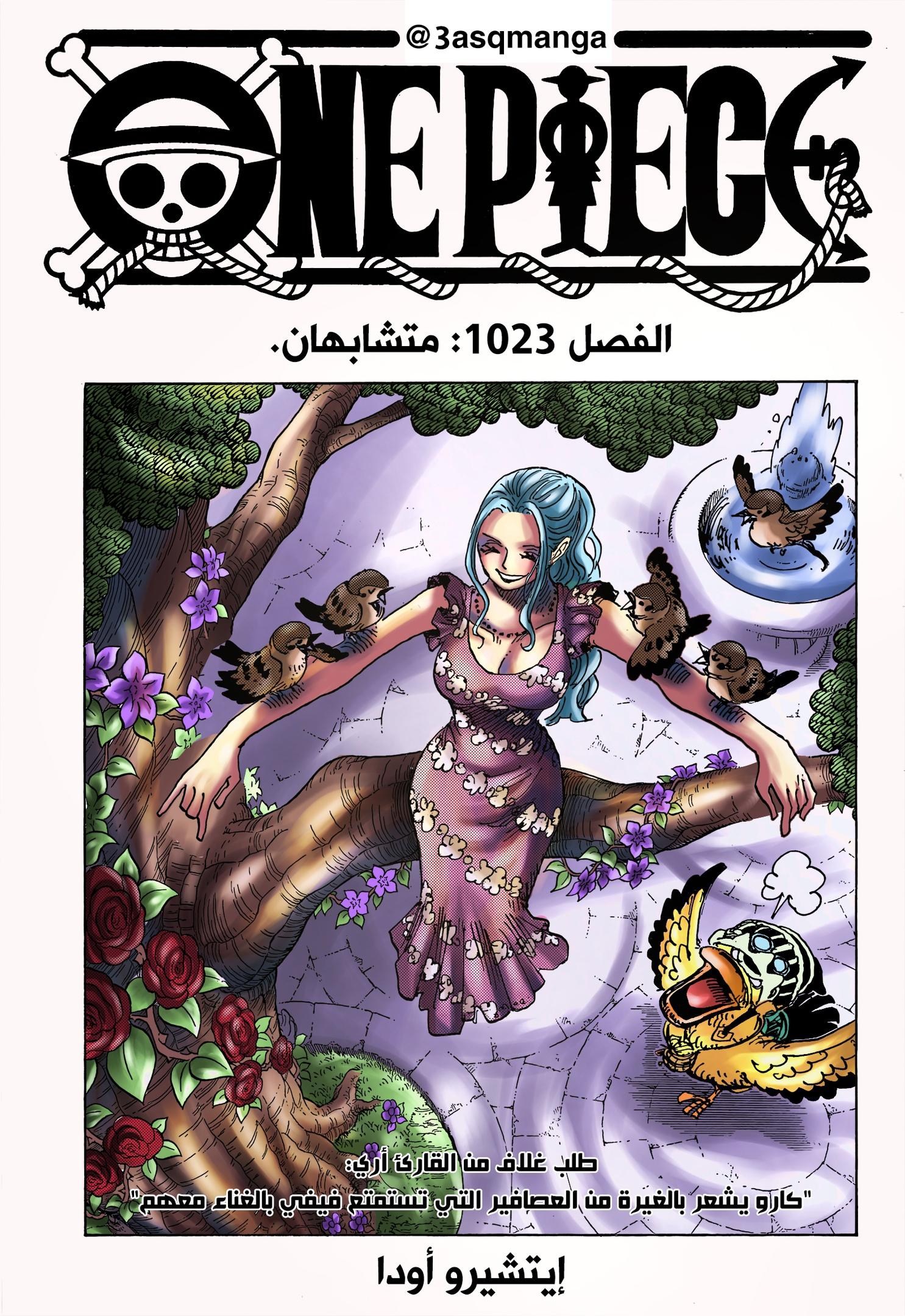 One Piece Arab 1023, image №25