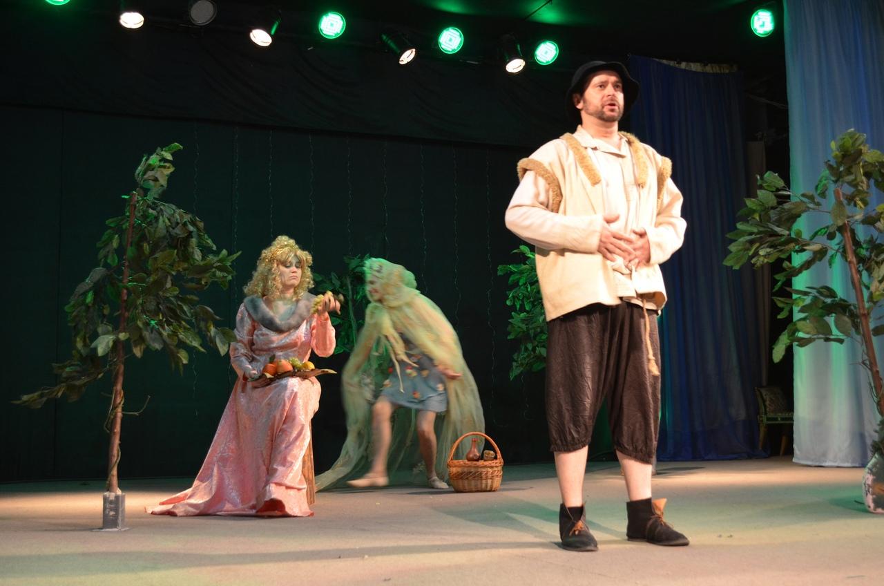 Юные петровчане посмотрели спектакль «Зербино и дары лесной феи» московского театра «Курсив»