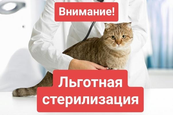 Балезинская участковая ветеринарная лечебница БУ УР Глазовс