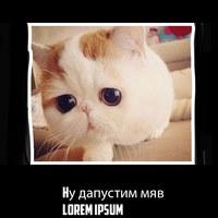 Ярослав Корогодин