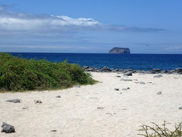 Галапагосские острова. Пляж на острове Сеймур с видом на остров Дафне.