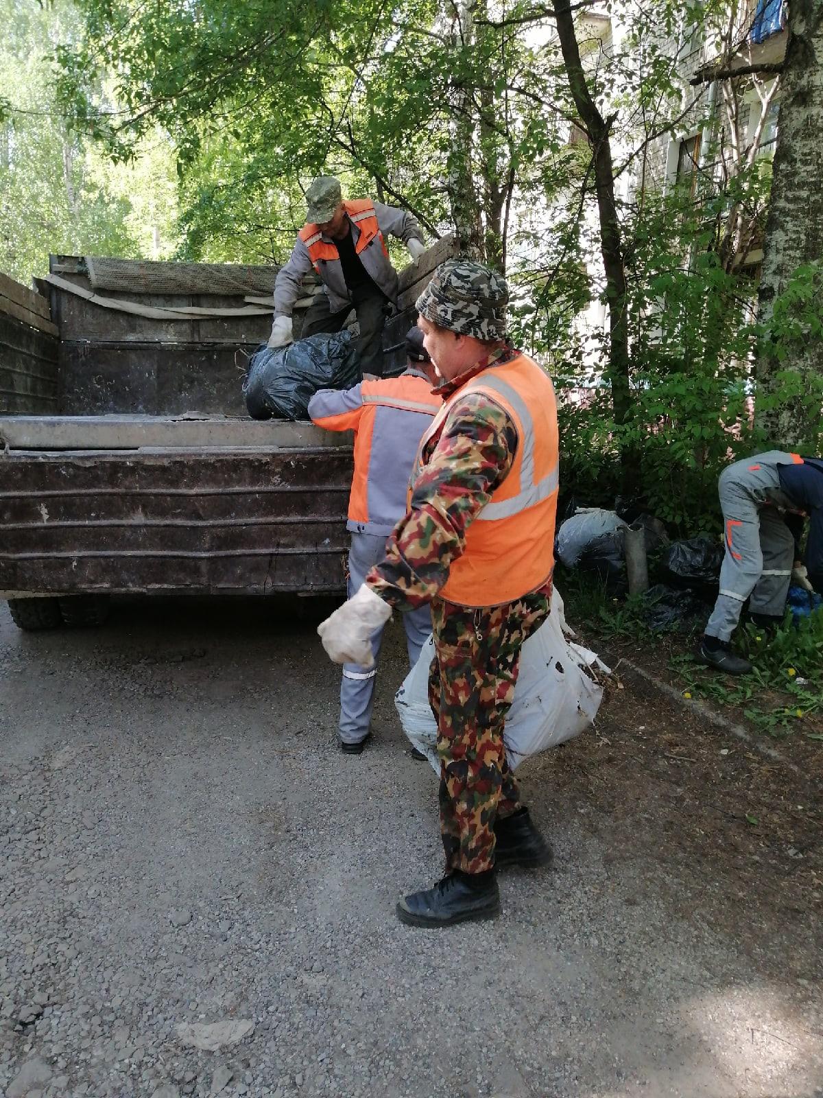 Вывоз мешков с мусором Чернышевского 32,34 Добролюбова
