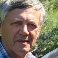 Кокарев Юрий