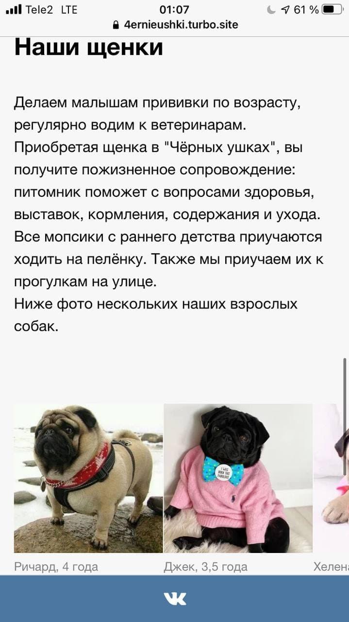 Турбо-страницы Яндекса: пошаговое руководство, изображение №14