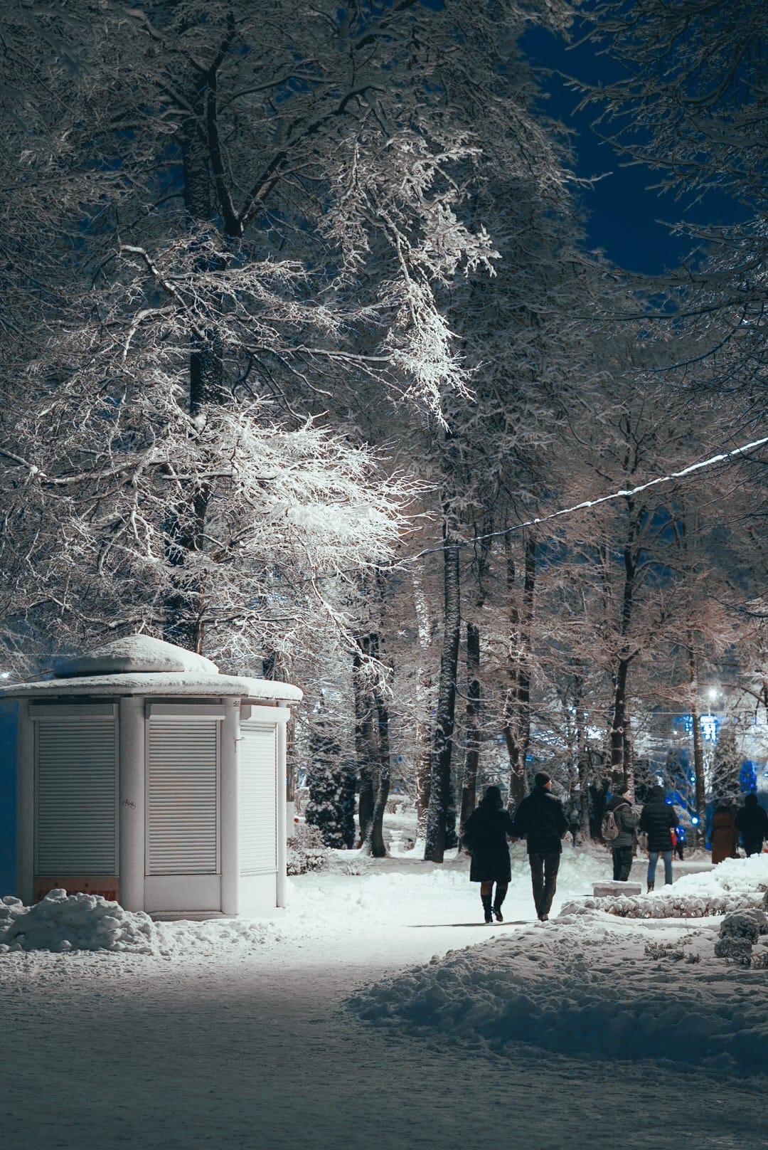 Тверской фотограф поделилась кадрами праздничного Городского Сада