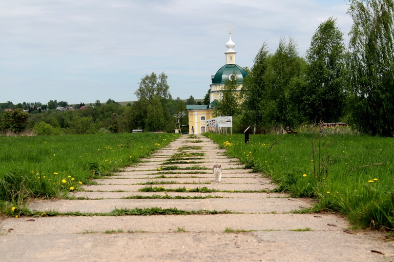 Дорога к Михаило-Архангельскому храму