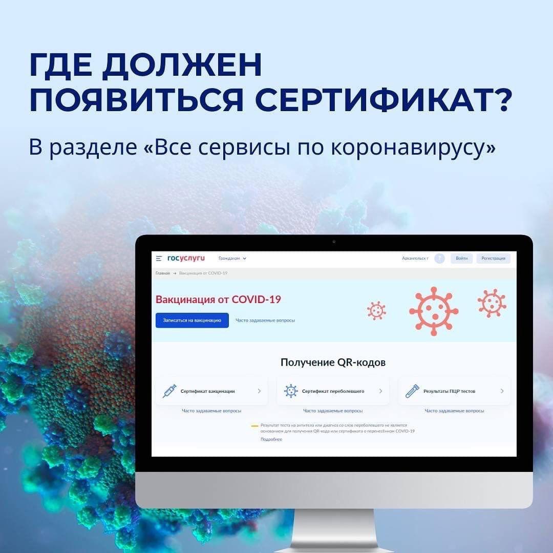 Сертификат – личный кабинет на сайте «Госуслуг».