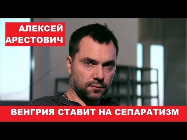 Алексей Арестович Венгрия начала спецоперацию сепартистского бунта в Закарпа