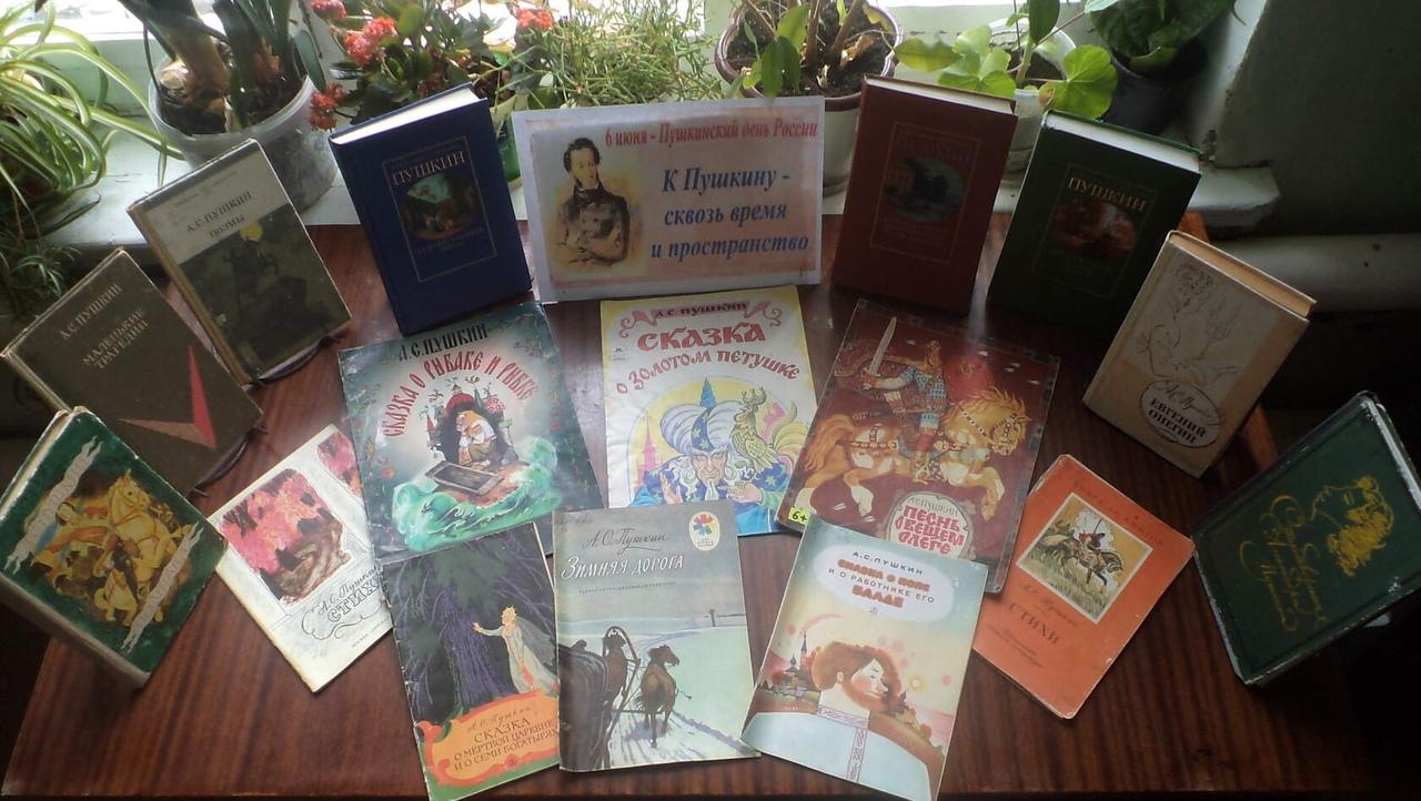 В Петровском районе прошли дистанционные мероприятия, посвящённые Пушкинскому дню России