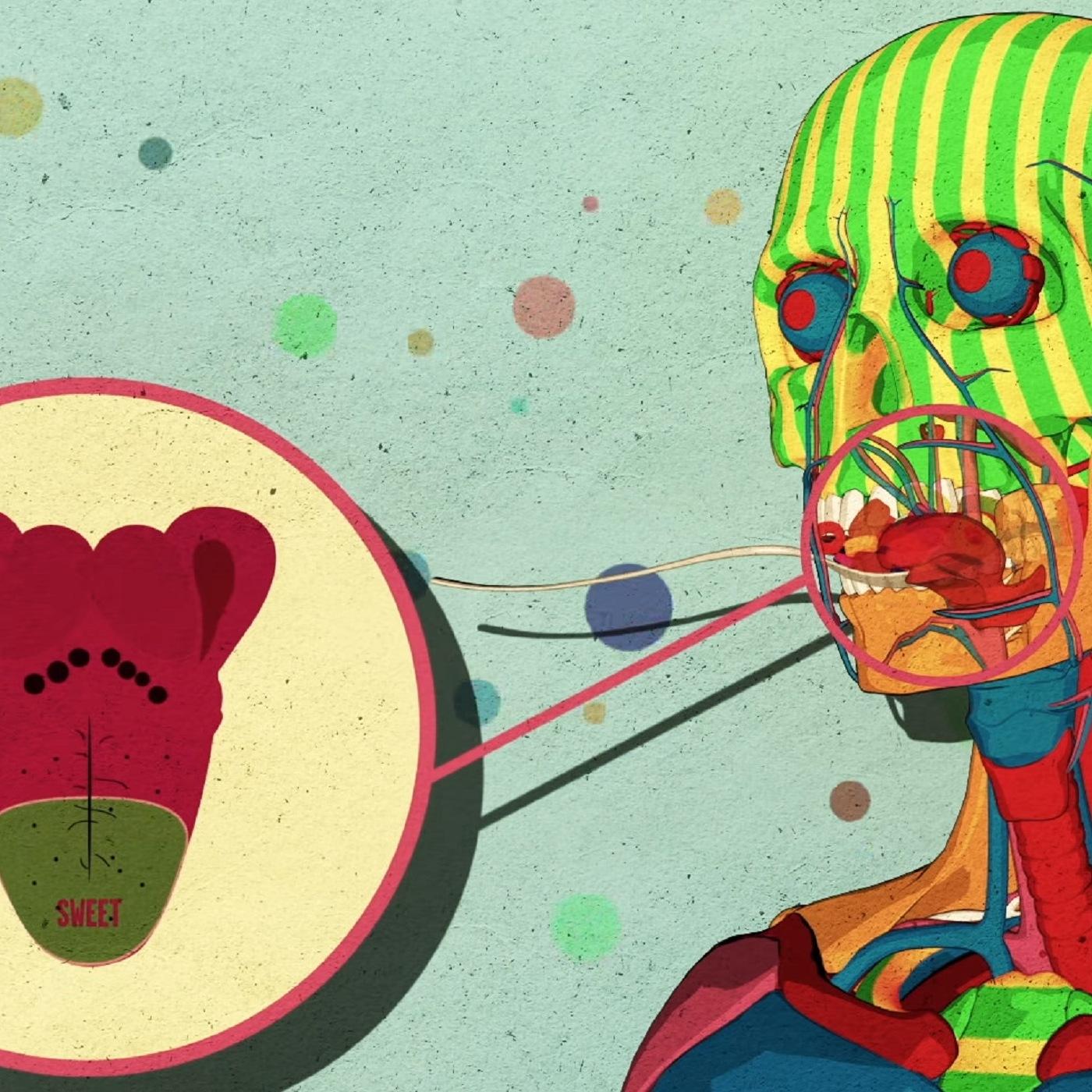 Как сахар влияет на мозг (Николь Авина)
