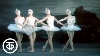 Танец маленьких лебедей. Чайковский. Лебединое озеро (1983)