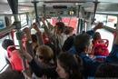 Существа общественного транспорта 18