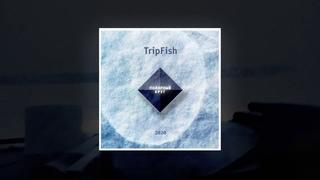 TripFish ПОЛЯРНЫЙ КРУГ