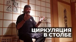 Циркуляция в столбе (чжаньчжуан) | Мастер Александр Скалозуб | Илицюань