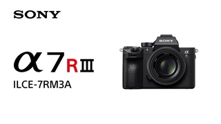 Product Feature   Alpha 7R III (ILCE-7RM3A)   Sony   α