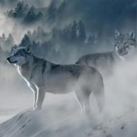 Фотография профиля Марата Наурызбаева ВКонтакте