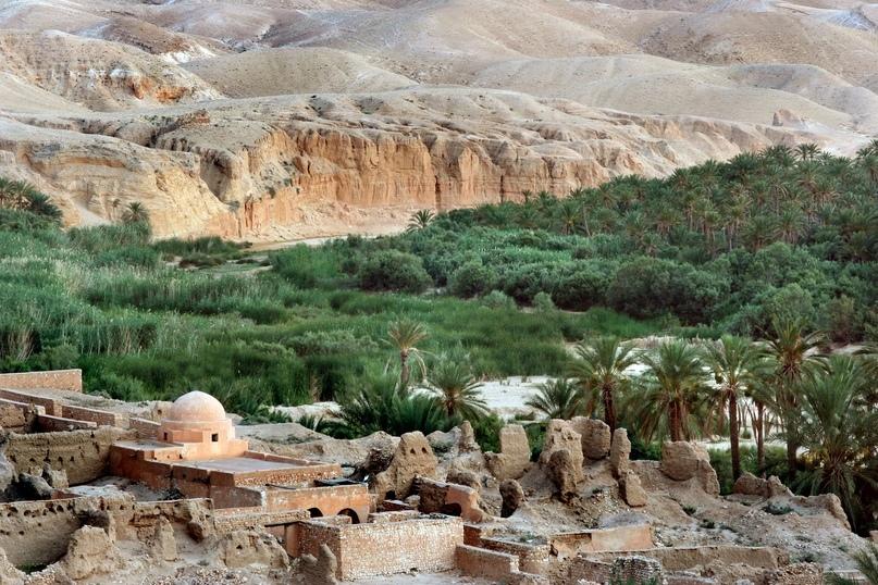 Обзор курорта Тозер (Тунис), изображение №1