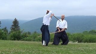 The Japanese martial art of aikido: aikido jo  (staff) Otoshi tsuki number 1