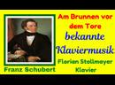 AM BRUNNEN VOR DEM TORE Franz Schubert bekannte Klavierwerke Classical Piano Music
