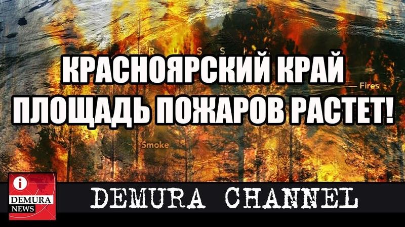 Площадь лесных пожаров снова начала расти в Красноярском крае